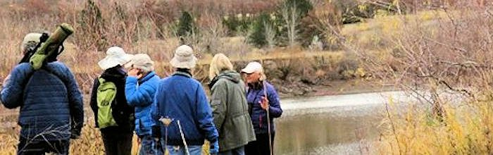 Postponed for now:  Bennington Lake Bird Walks