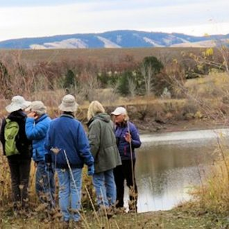 Bennington Lake Bird Walks – Tue – 8:00 AM – New Time