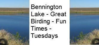 Bennington Lake Bird Walks 9:00 AM Start