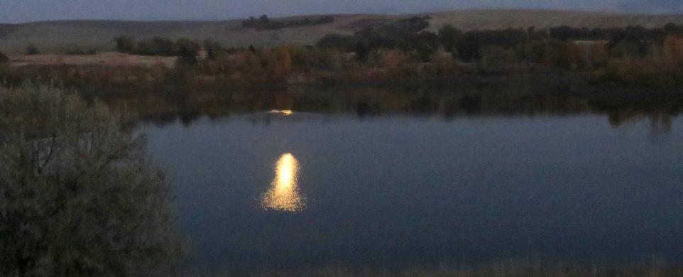 Field Trip-Full Moon Walk at Bennington Lake